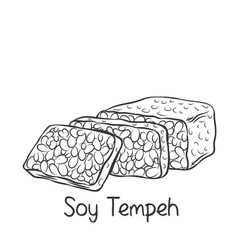 Soy tempeh monochrome outline icon vector