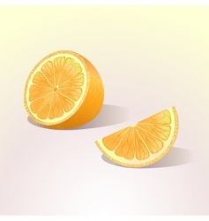orange fruit with a slice vector image