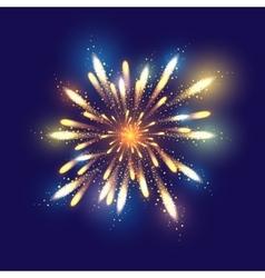 Fireworks dark background with vector image