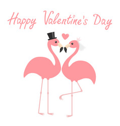 happy valentines day two pink flamingo set vector image
