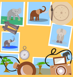 Set for safari on a yellow background vector