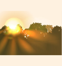 Sun rise with bright sunbeams an trees vector