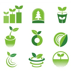 greenIcon vector image