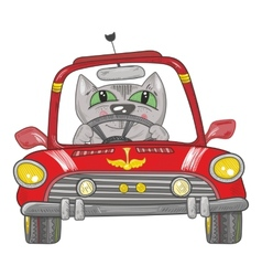 Cat on the car vector