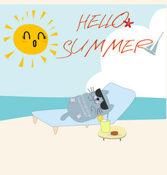 funny cat on the summer beach vector image
