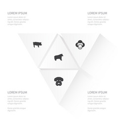 Icon nature set of capuchin husky swine and vector