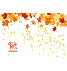 maple leaves decor vector image