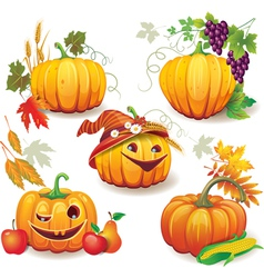 Autumn still life with pumpkins vector image vector image