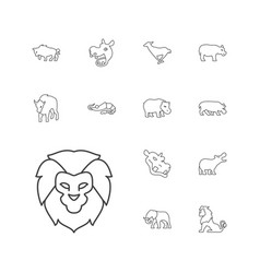 13 zoo icons vector