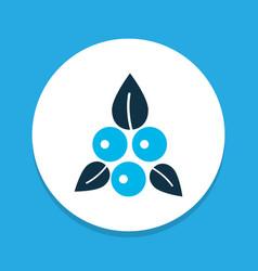 berries icon colored symbol premium quality vector image