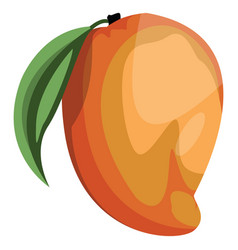 cartoon of a orange and yellow mango fruit with vector image