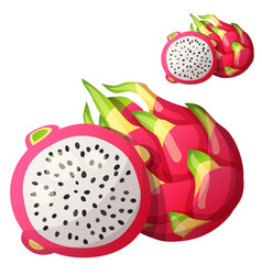 pitaya dragon fruit fruit cartoon icon vector image