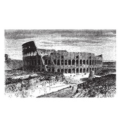 Roman colosseum located in rome vintage engraving vector