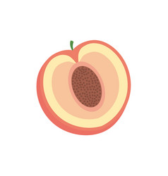 slice pomegranate fruit healthy vector image vector image