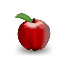 Detailed big shiny red apple vector