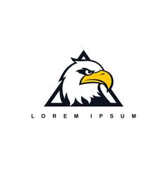 Eagle hawk bird logo template vector