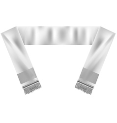 football scarf vector image