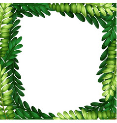nature leaf branch border vector image