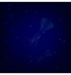 Transparent jellyfishes swim in deep underwater vector image