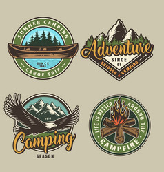 vintage summer camping colorful prints vector image