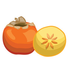 cartoon of an orange persimmon fruit half a vector image