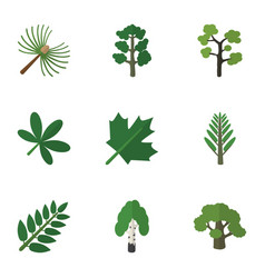 flat icon bio set of garden timber jungle and vector image