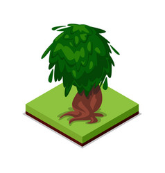 Green old oak isometric 3d icon vector