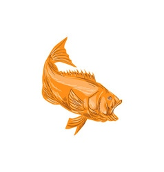 Largemouth Bass Diving Drawing vector