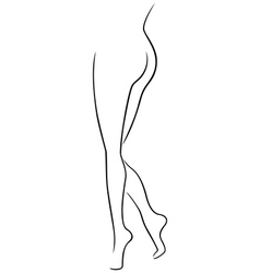 Lower part of graceful female body vector