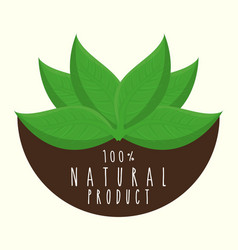 Nature and leaves icon vector