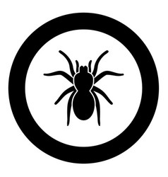 Spider or tarantula black icon in circle vector