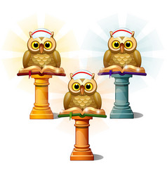 three statues owls with books on pedestals vector image
