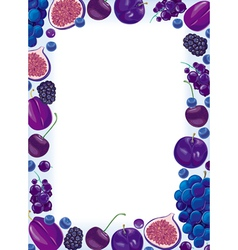 Lilac fruit and berries frame vector image