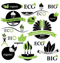 Set of bio and organic badges and labels vector image vector image
