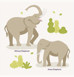 african elephant and asian elephant walking in the vector image