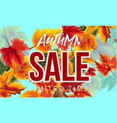 autumn sale banner with leaves vector image