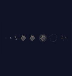 firework flashes or firecrackers splashes light vector image