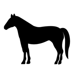Silhouette monochrome with farm horse vector