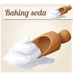Baking soda Detailed Icon vector image vector image