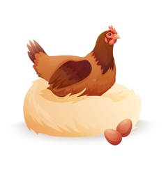 Hen in nest sitting on eggs vector image vector image