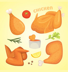 beautiful delicious fried chicken set of vector image