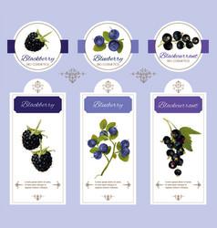 Berry cosmetic banner vector