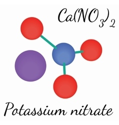 CaN2O6 Calcium nitrate molecule vector image