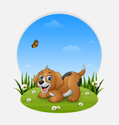 cartoon funny dog on the grass vector image