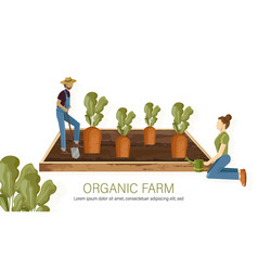 Farmers carrot harvest growing eco products flat vector
