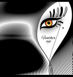 feather eye for exotic design vector image