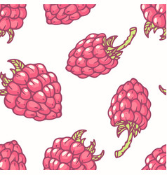 hand drawn seamless pattern with raspberry vector image