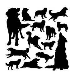 Hovawart dog animal silhouettes vector