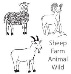 sheep farm animal wild vector image