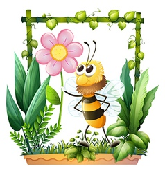A bee holding a pink flower vector image vector image